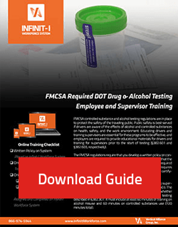 download flyer dot drug alcohol testing required training
